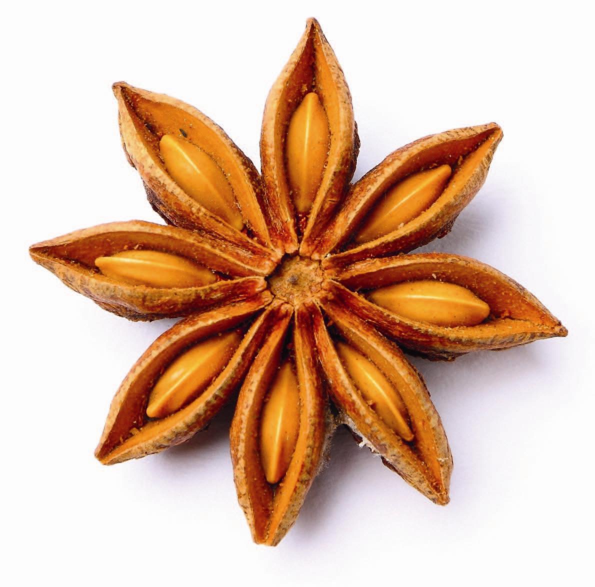 Star-Anise--Rusotähtianis
