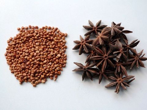 Star-Anise--Stjerne-Anis