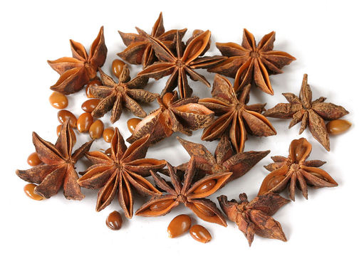 Star-Anise--Zvjezdasti-anis