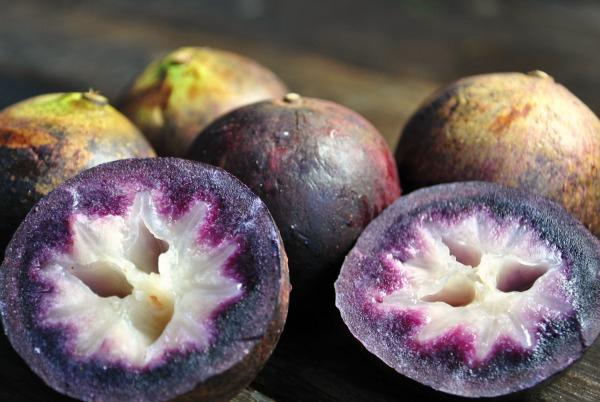 Star-apple-purple-aguay