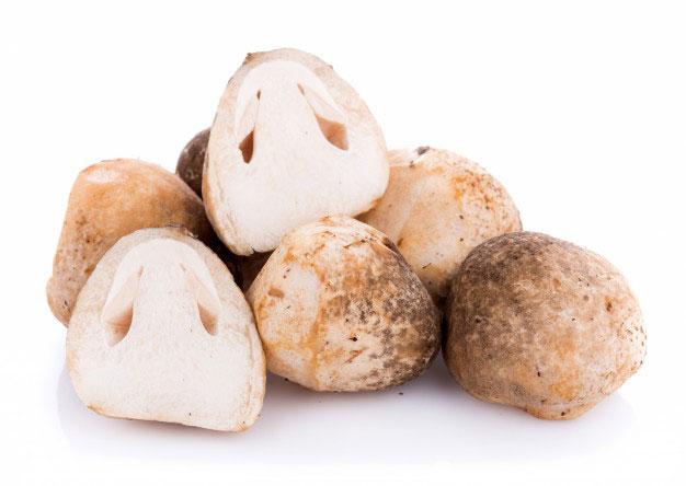 Half-cut-Straw-Mushroom