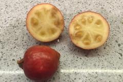 Half-cut-Strawberry-guava