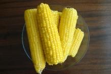 Sweet-corn-cobs
