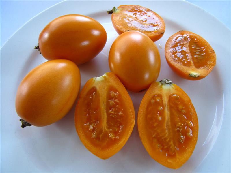 Orange-Tamarillo