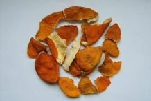 Dried-Tangerine-peel