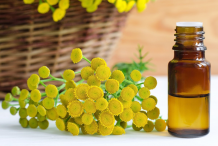 Tansy-essential-oil