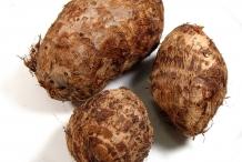Taro-rhizomes