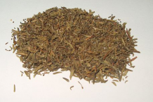 Dried-Thyme-herb