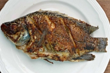 Whole-fried-Tilapia-fish