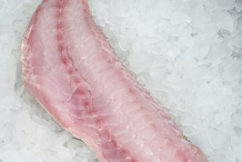 Tilefish-fillet