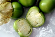 Tomatillo-half-cut