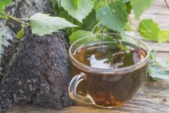 Turkey-Tail-mushroom tea