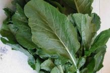 Leaves-of-Turnip