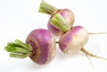 Turnip-bulbs