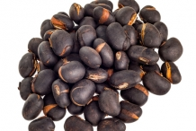 Seeds-of-Velvet-beans