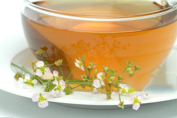 Water-Plantain-Tea