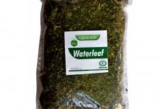 Dried-Waterleaf