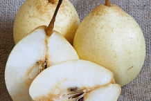 White-pear-cut