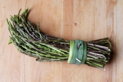 Bunch-of-Wild-asparagus
