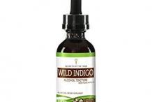 Wild-Indigo-tincture
