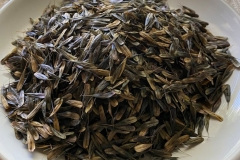 Seeds-of-the-Woad