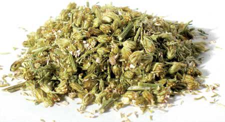 Dried-Yarrow-Flower