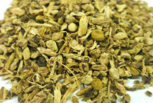 Dried-yellow-dock-root