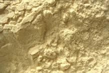 Yucca-root-powder