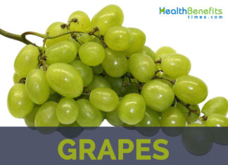 Grapes facts and health benefits