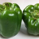 Green-bell-pepper
