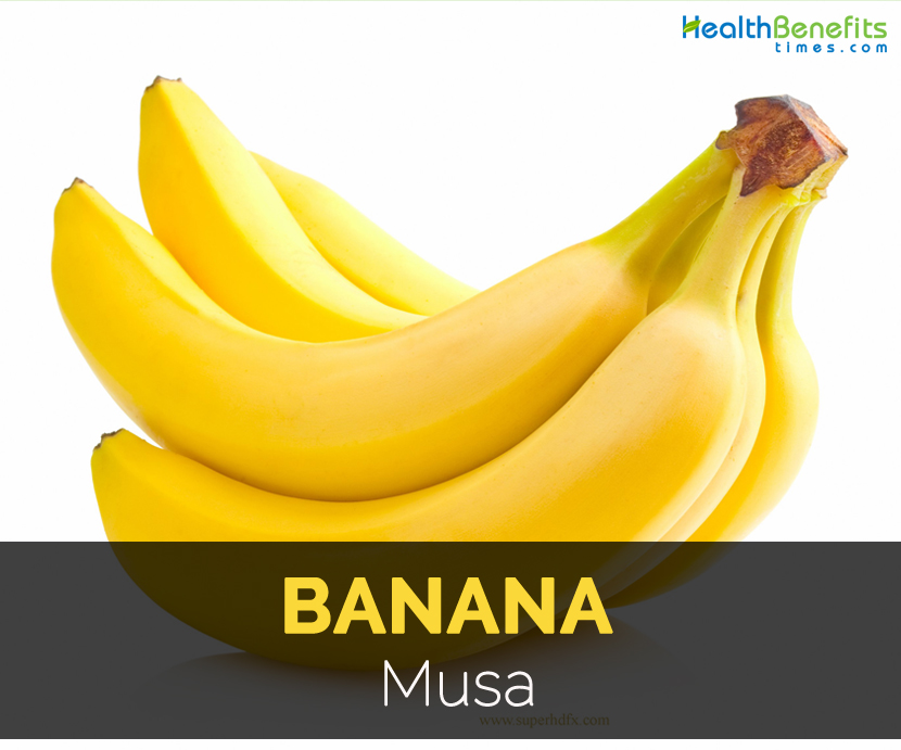 benefits of banana Banana is essential due to its rich potassium content which is important to keep the balance in blood pressure and proper functioning of the heart.