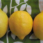 Sweet-lemon