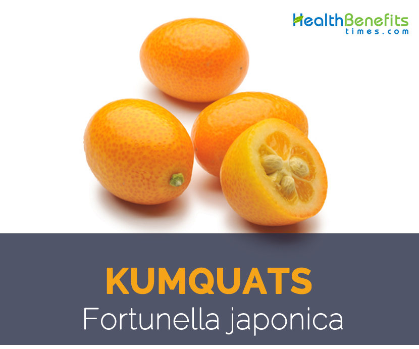 Kumquats facts and health benefits