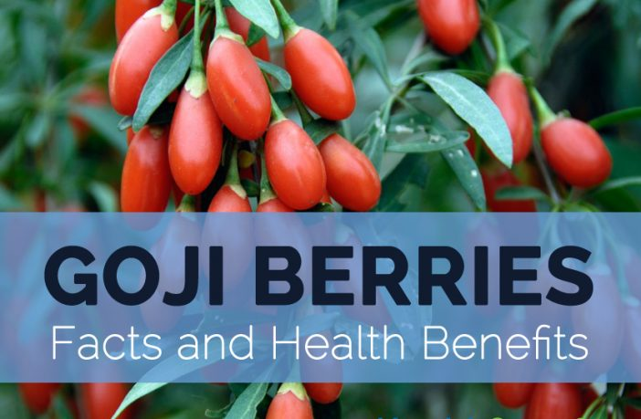 Goji Berries Facts Health Benefits And Nutritional Value