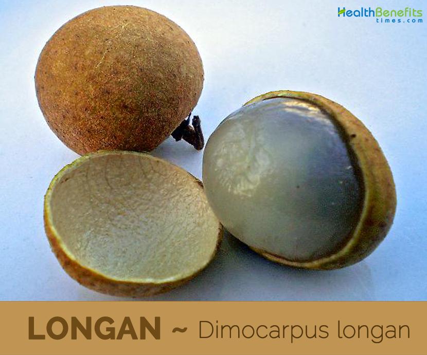 Health benefits of Longan