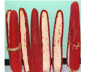 Health benefits of Red fruit (Buah Merah)