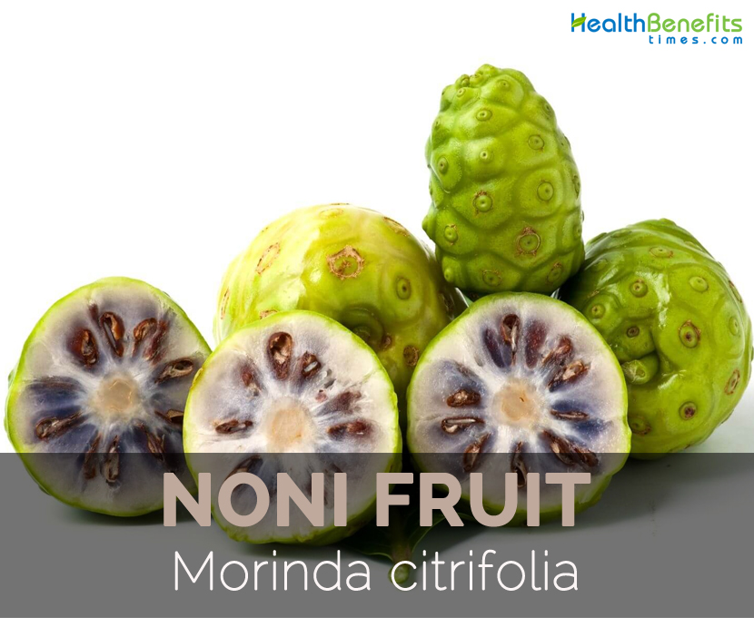 noni-fruit-morinda-citrifolia