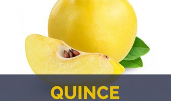 Quince facts and health benefits