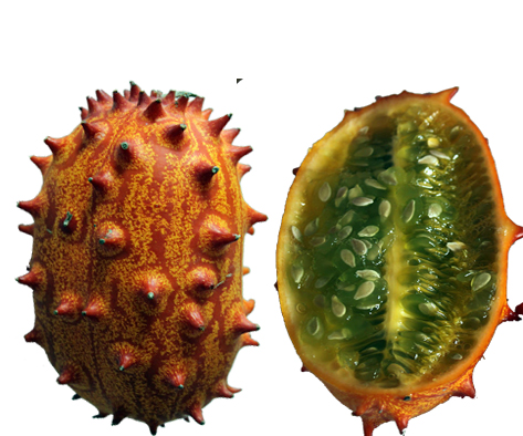 horned melon quick facts