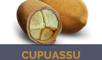 Cupuassu facts and benefits
