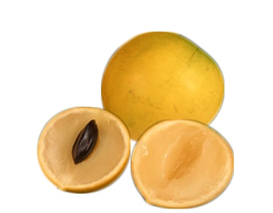 Health benefits of Abiu Fruit