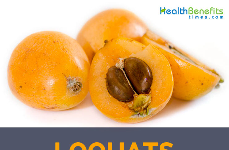 Loquat facts and health benefits