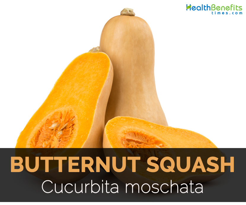 Butternut Squash Facts Health Benefits Nutritional Value