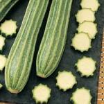 Zucchini Gadzukes