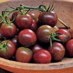 Black Pearl tomato