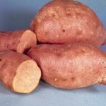 Centennial Sweet Potatoes