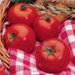 Park's Whopper Tomato
