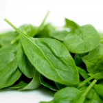 Smooth-Leafed Spinach