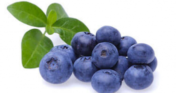 Health benefits of Bilberry