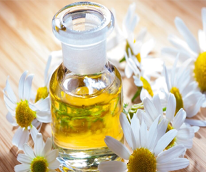 Health Benefits of Chamomile Essential Oil